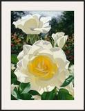 The Huntington Rose Garden Art by Brian Davis