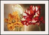 Tulips Prints by Selina Werbelow
