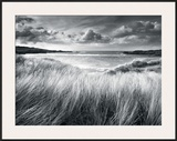 Sea Grass Framed Giclee Print by Stephen Gassman