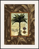 Date Palm Framed Giclee Print by Karl Rattner