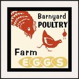 Barnyard Poultry-Farm Eggs Framed Giclee Print
