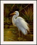 Tropical Egret II Art by  Kilian