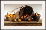 Apples and Oranges Posters by Pauline Eblé Campanelli