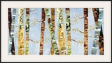 Bark Abstract Art by Carmen Dolce