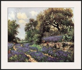 Blue Bonnet Trail Print by Porfirio Jr. Salinas