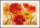 Garden of Delight Prints by  Nan