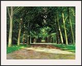 Wegkreuzung im Park Signiert Poster by Andreas Scholz