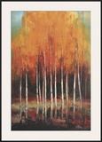 Morning Whisper Prints by Peter Colbert
