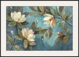 Floating Magnolias Art by Albena Hristova