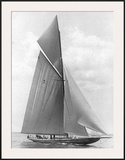 The Vanitie During the America's Cup, 1910 Posters by Edwin Levick