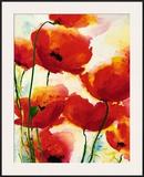 Roter Mohn Prints by Heidi Reil