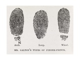 Fingerprint Types, 17th Century Giclee Print by Middle Temple Library