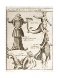 1662 Schott Sea Monsters And Mermaids Giclee Print by Stewart Stewart
