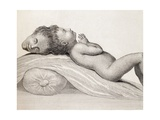 1787 Two Headed Boy of Bengal by E. Home Giclee Print by Stewart Stewart