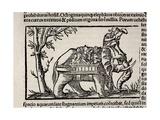 1552 Munster's War Elephant of India Giclee Print by Stewart Stewart