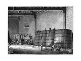 Wine Production, 19th Century Giclee Print by CCI Archives