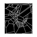 Web of Spider Exposed To Caffeine Giclee Print by  NASA