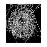 Garden Spider Web, Computer Artwork Giclee Print by  NASA