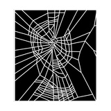 Web of Spider Exposed To Benzedrine Giclee Print by  NASA