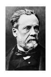 Louis Pasteur, French Microbiologist Giclee Print by Science Photo Library