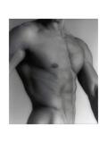 Nude Man's Torso Giclee Print by  Cristina