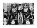 Rhesus Monkeys Used In Soviet Space Research Giclee Print by Ria Novosti
