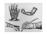 Selection of 16th Century Artificial Arms & Hands. Giclee Print by Jeremy Burgess