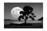 Moon Rising Over the Sea Giclee Print by Detlev Van Ravenswaay