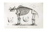 1812 American Mastodon Jefferson Mammoth Giclee Print by Stewart Stewart