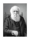 1879 Charles Darwin Steel Engraving Crop Giclee Print by Stewart Stewart