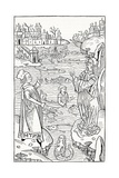 15th Century German Woodcut Print Giclee Print by CCI Archives