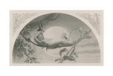 Ariel, the Tempest Giclee Print by Henry James Townsend