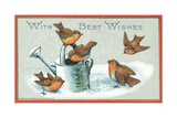 Five Robins and Watering Can, Christmas Card Giclee Print