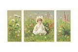 Young Child Sitting in Flower Meadow, Christmas Card Giclee Print