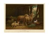 The Flock Gicléedruk