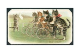 The Start, Cat Cycle Race, Christmas Card Giclee Print by  English School