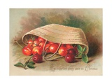 Basket of Cherries, Christmas Card Giclee Print