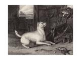 The Intruder Giclee Print by Edwin Henry Landseer