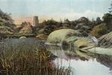 Reed Staithe, Ranworth Photographic Print