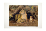 Lioness and Young, 1855 Giclee Print by Joseph Wolf