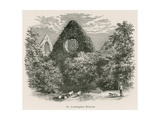 Dryburgh Abbey, St Catherine's Window Giclee Print by Alexander Francis Lydon