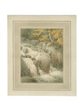 Fall of the Braan from the Hermitage at Dunkeld, 1791 Giclee Print by John White Abbott