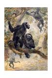 Hoolocks Gibbon, 1869 Giclee Print by Joseph Wolf
