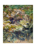 Row in the Jungle, 1863 Giclee Print by Joseph Wolf