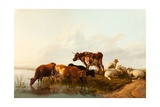 A Summer Afternoon, 1861 Giclee Print by Thomas Sidney Cooper