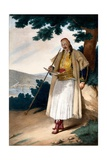 A Greek Gardener or Houseman - Plate X, Engraved by Lemercier from 'Voyage À Athènes Et a À… Giclee Print by Louis Dupré