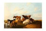 Evening in the Meadows, 1871 Giclee Print by Thomas Sidney Cooper