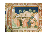 The Betrayal and Capture of Christ in the Garden of Gethsemane Giclée-tryk af Pietro Lorenzetti