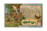 Plateau of Mirida with Hummingbird and Praying Mantis and Wayu Indians Giclee Print