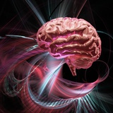 Brain Research, Conceptual Artwork Photographic Print by Laguna Design